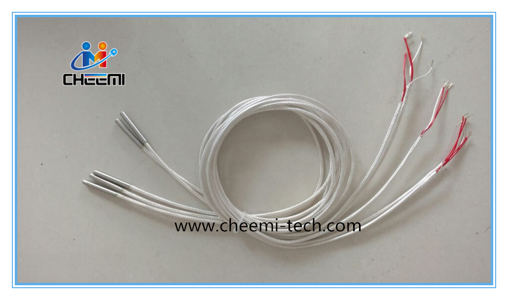 Temperature Sensor RTD PT100 Probe with Cable Two-Wire 3